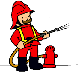 imagen del contenido Plan piloto de bomberos voluntarios comenzará en Palmitas