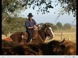 imagen del contenido Sólo el 1% de los 175 mil trabajadores rurales que hay en el país, sabe que tiene derecho al salario vacacional