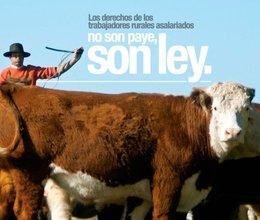 imagen del contenido Día del Trabajador Rural: lanzan campaña para difundir derechos laborales