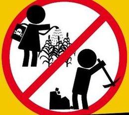 imagen del contenido Trabajo Infantil y Juvenil en Uruguay