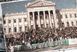 imagen del contenido CLUC: el club cannábico de Proderechos