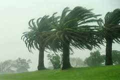 imagen del contenido Alerta amarilla y naranja por vientos fuertes en varios departamentos