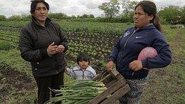 imagen del contenido Labrando otro destino para las mujeres rurales argentinas