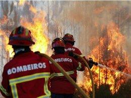 imagen del contenido Incendio forestal en el centro de Portugal habría matado al menos 57 personas