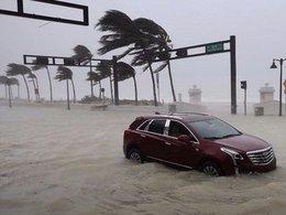 imagen del contenido Florida: Trump declara el estado de catástrofe natural