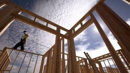 """imagen del contenido Canadá-EEUU:  Una """"pelea continua"""" por la madera"""