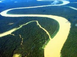 imagen del contenido Brasil redujo la deforestación de su área amazónica en un 28%