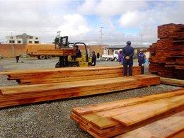 imagen del contenido Bolivia trata de recuperar el sector forestal aumentando la exportación de madera