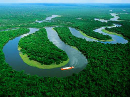imagen del contenido Amazonia: 400 naciones indígenas aliadas para proteger y restaurar la selva