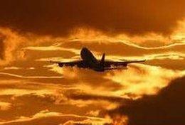 imagen del contenido Compañía aérea: ¿pasajeros o carne?