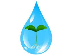 imagen del contenido Conciencia Agropecuaria, Sin Ciencia