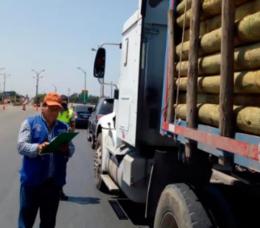 imagen del contenido Fiscalizan transporte forestal en Perú