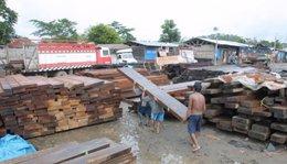 """imagen del contenido Perú: Gobierno de EEUU """"expresa preocupación"""" por legalidad de cargamento de madera"""