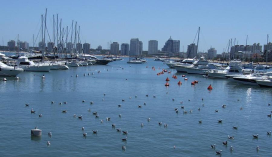 imagen de Punta del Este presentado como modelo de gestión turística