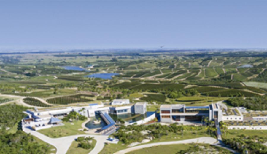imagen de Bodega uruguaya elegida la cuarta mejor del mundo